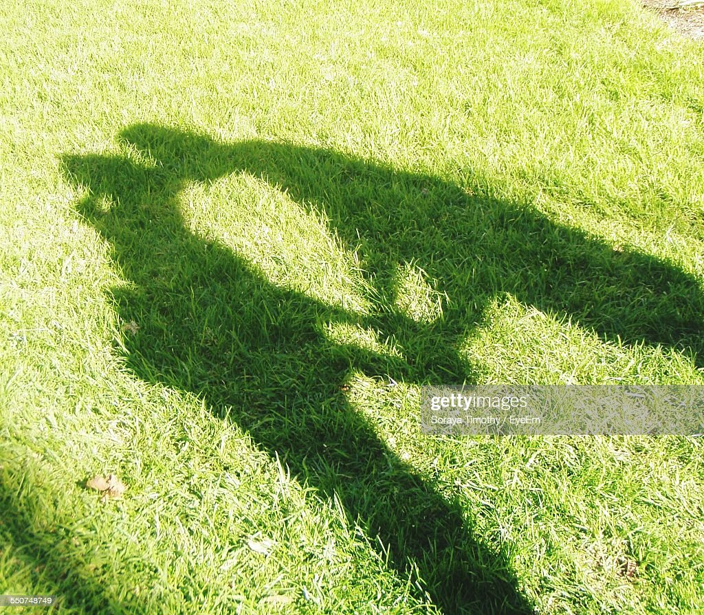 Shadow of couple kissing on grassy field getty images shadow of couple kissing on grassy field voltagebd Images