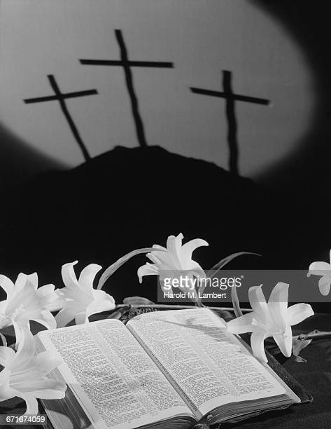 shadow of crucifix with bible and flowers - {{ collectponotification.cta }} foto e immagini stock