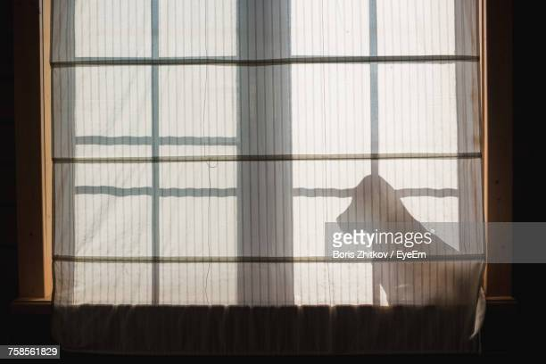 shadow of curtain on window - guarding stock photos and pictures