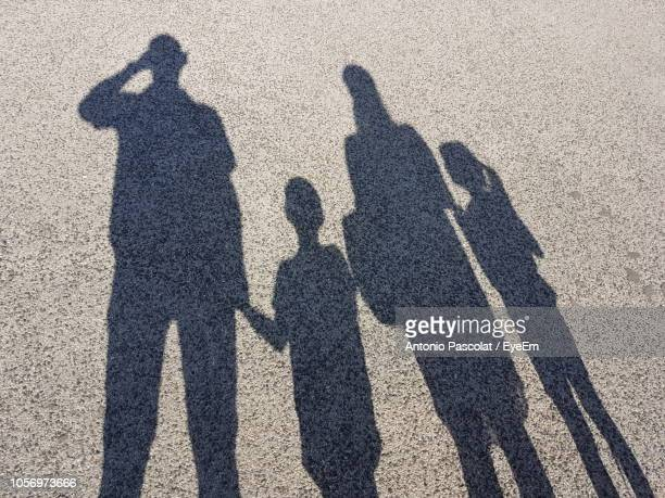 shadow of family on field - schaduw stockfoto's en -beelden
