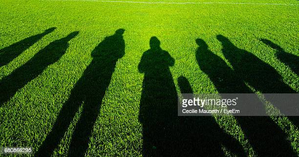 Shadow Of Friends On Grassy Field During Sunny Day