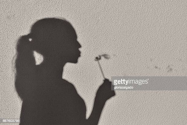 Shadow of girl blowing a dandelion clock