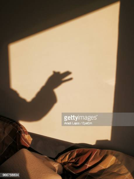 Shadow Of Hand On Wall At Home