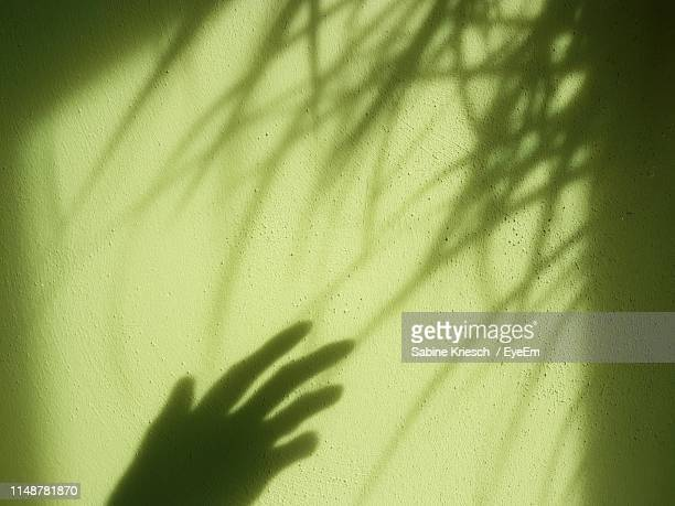shadow of hand on wall - sabine kriesch stock-fotos und bilder