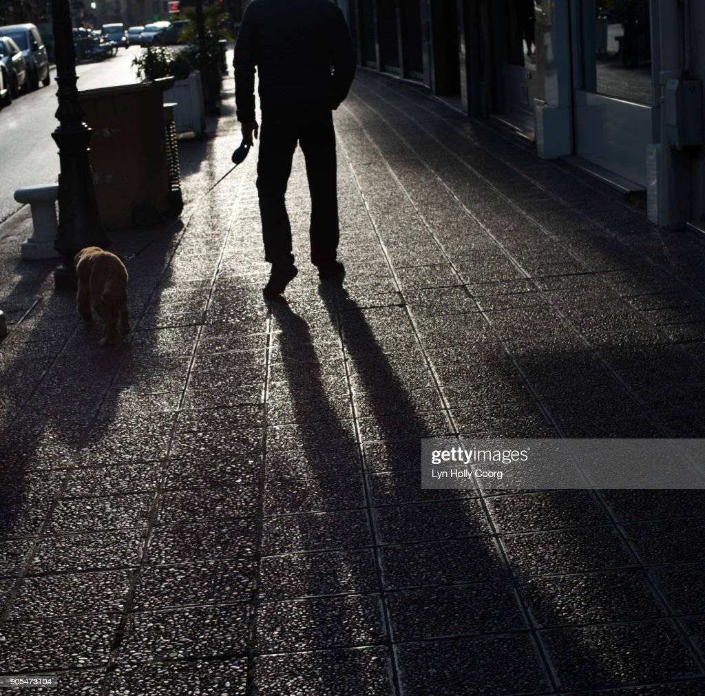 Shadow of man and dog : Stock Photo