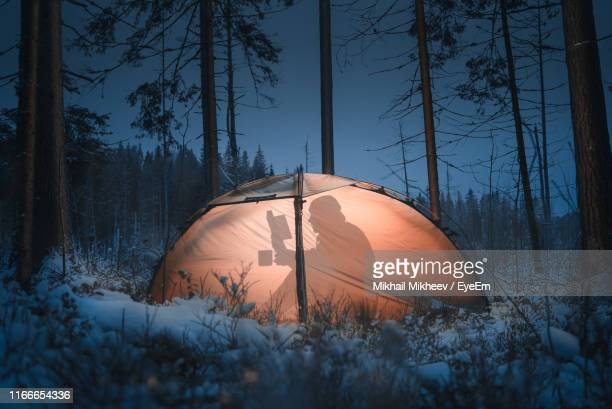 shadow of man reading book in illuminated tent at snow covered forest during night - finlandia fotografías e imágenes de stock