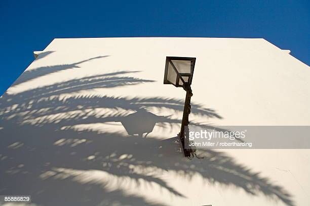 Shadow of palm tree on white wall. Vejer de la Frontera, Andalucia, Spain, Europe