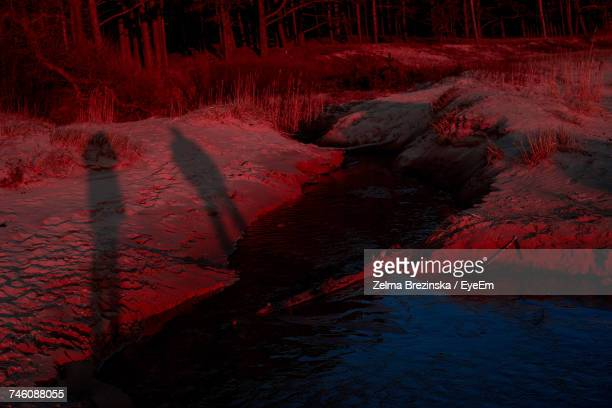 shadow of people by stream on red field - brezinska stock pictures, royalty-free photos & images
