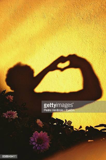 Shadow Of Person Making Heart Shape With Hand On Wall