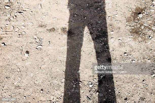 shadow of person standing on field - albrecht schlotter stock photos and pictures