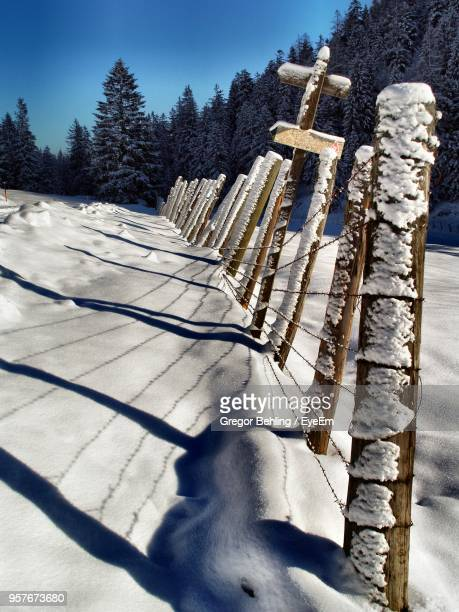 Shadow Of Tree On Snow Against Sky