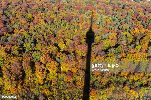 Shadow of TV Tower Stuttgart on autumn forest, Stuttgart, Baden-Wuerttemberg, Germany
