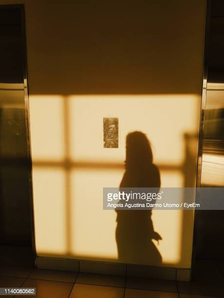 shadow of woman on wall at home - 影のみ ストックフォトと画像