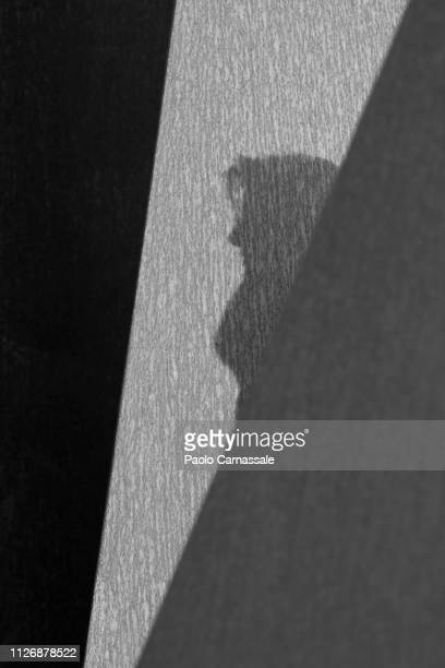 shadow of woman profile view on the wall - high contrast stock pictures, royalty-free photos & images