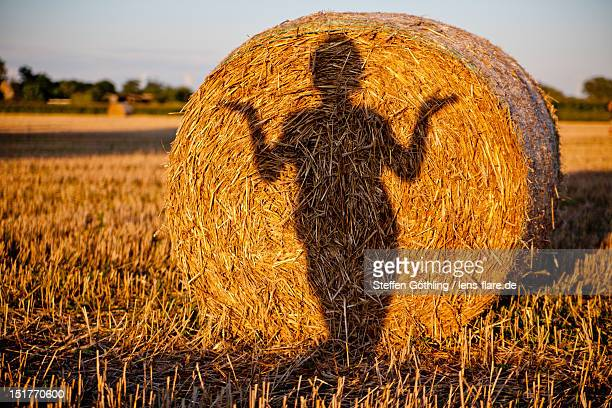 Shadow on bale of straw