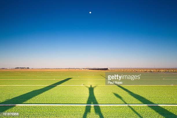 Shadow on ground