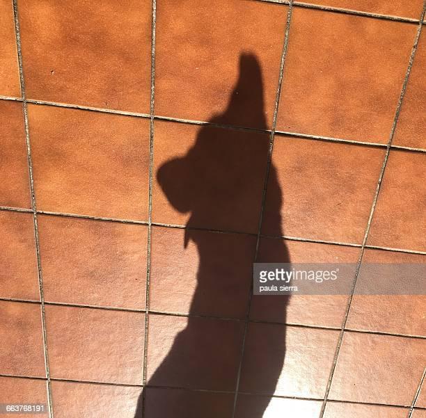 Shadow Pets