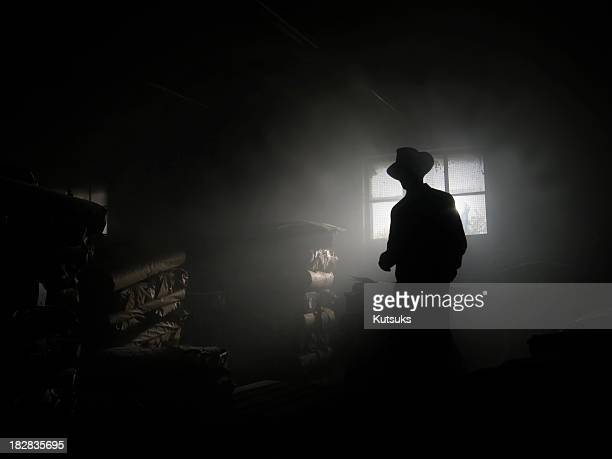 shadow - detective stock pictures, royalty-free photos & images