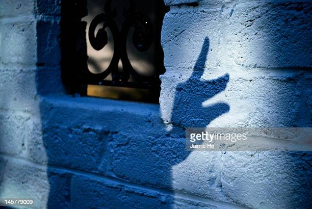 shadow puppet - shadow puppet stock photos and pictures