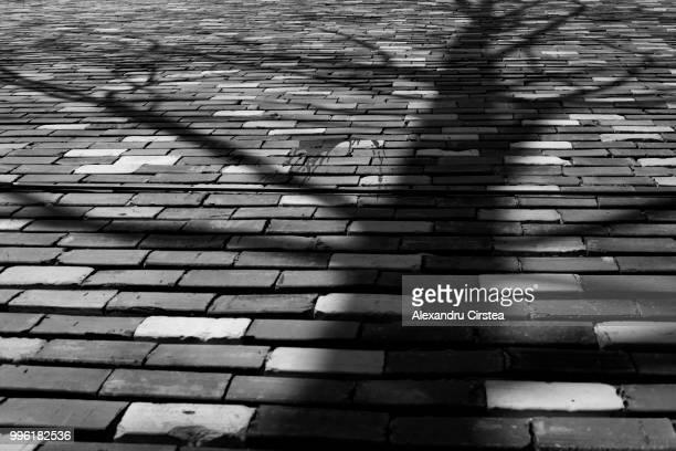 Shadows and Bricks