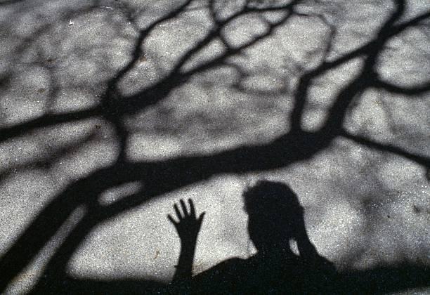 Wapblox | The Silhouette Revenge [Episode 2]