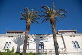 shadows two palm trees façade hotel