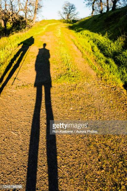 shadows of two people on dirt road in henry w. coe state park - koeberer stock photos and pictures