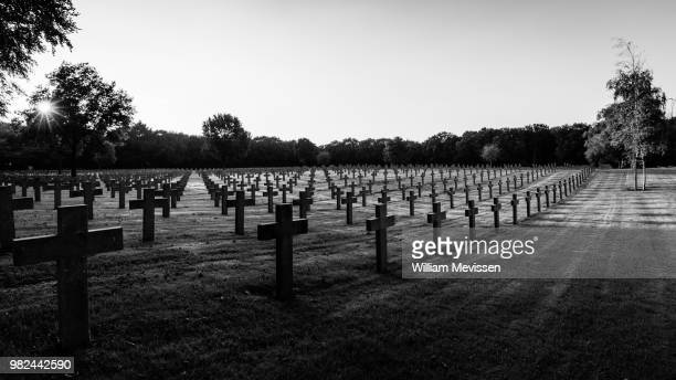 shadows of war - william mevissen stockfoto's en -beelden
