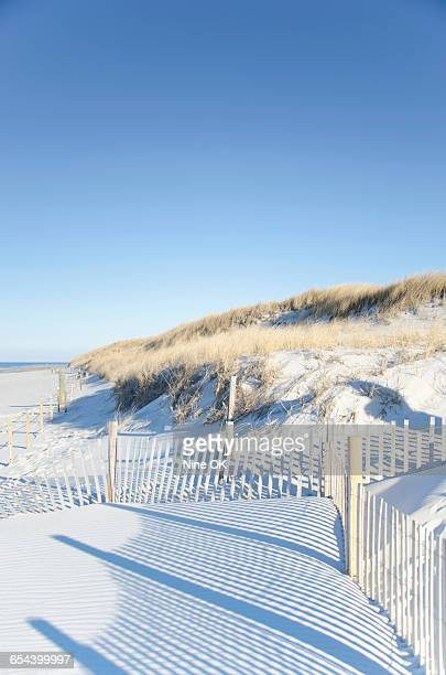 Shadows on sand dunes, Cape Cod