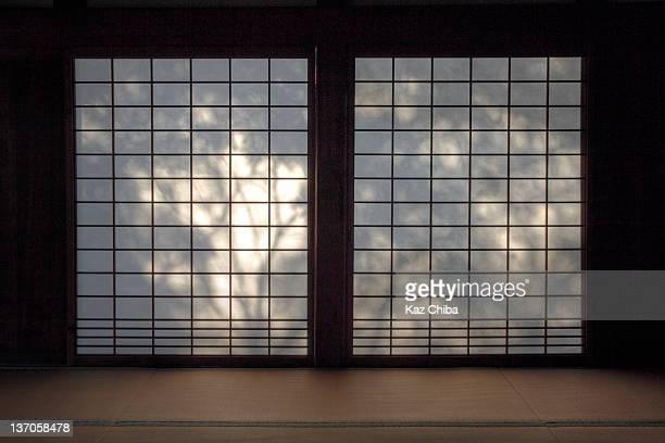Shadows on Shoji Screen