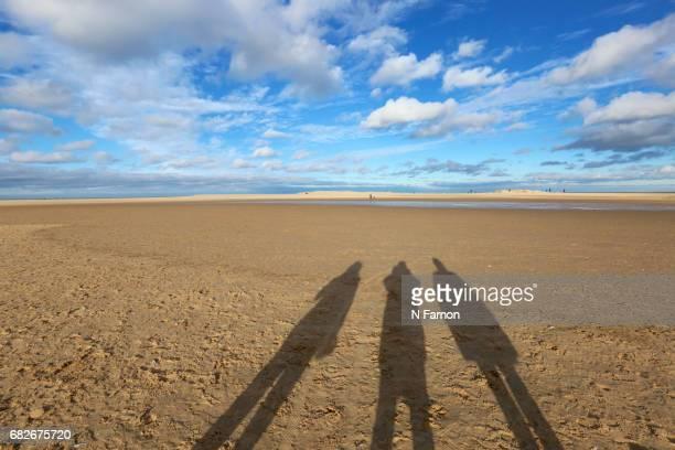 3 Shadows on the Beach