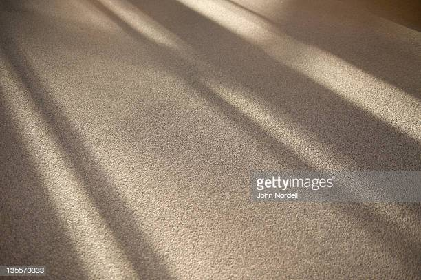 shadows on the floor in the lobby of a school building - teppich stock-fotos und bilder