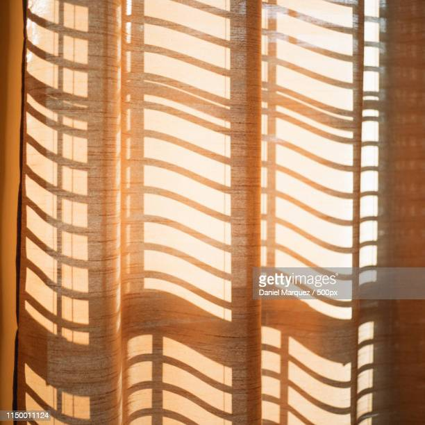 shadows - golden hour stock pictures, royalty-free photos & images