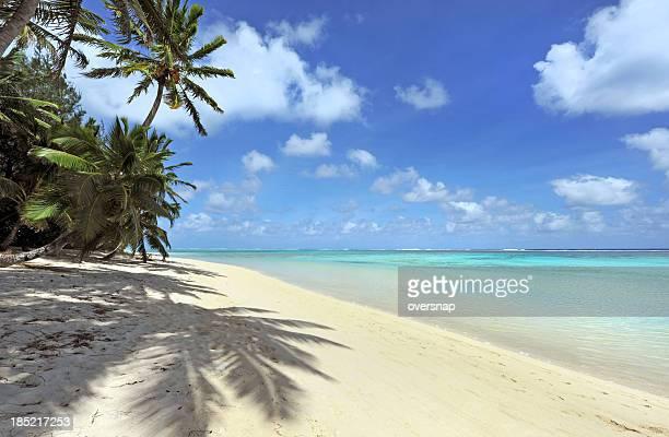 shady spiaggia - rarotonga foto e immagini stock