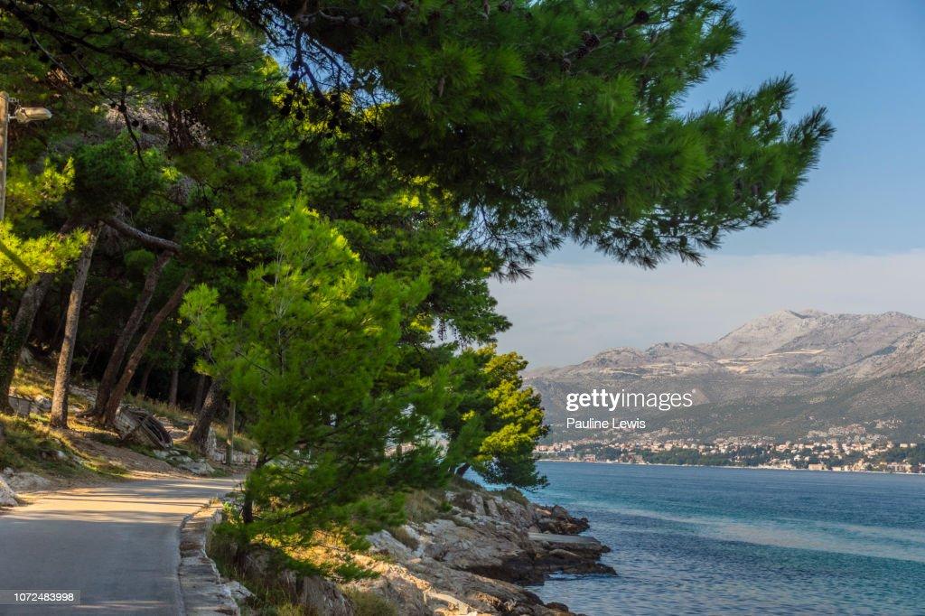 A Shady Walkway at Cavtat, Croatia : Foto stock