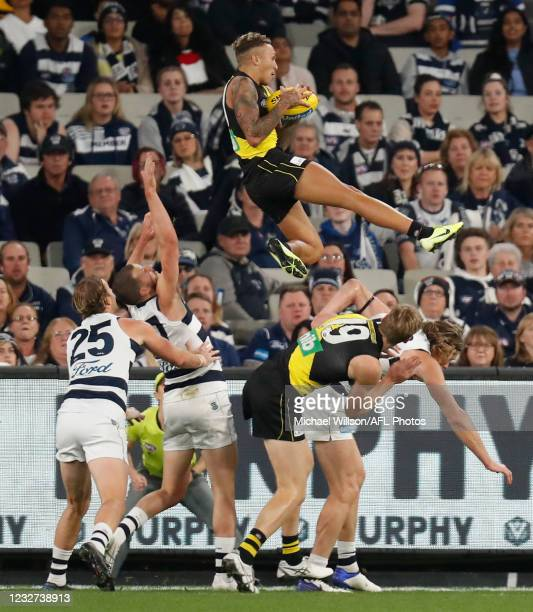 Shai Bolton of the Tigers marks over teammate Tom J. Lynch and Mark Blicavs of the Cats during the 2021 AFL Round 08 match between the Richmond...