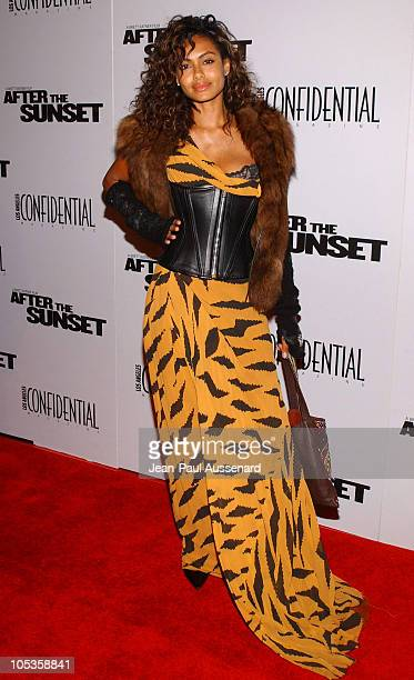 Shakara Ledard during 'After the Sunset' Los Angeles Premiere Arrivals at Grauman's Chinese Theater in Hollywood California United States