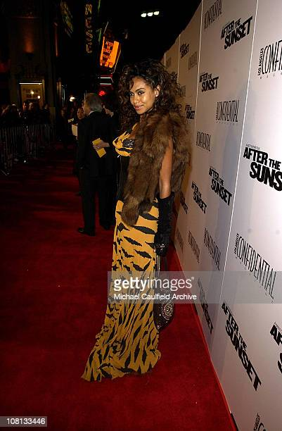 Shakara Ledard during After the Sunset Los Angeles Premiere Red Carpet at Chinese Theatre in Hollywood California United States