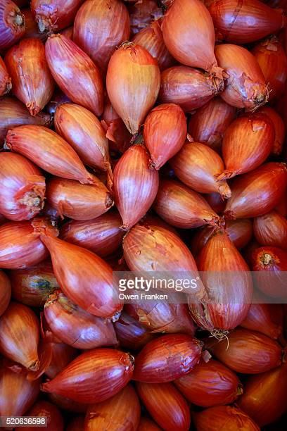 shallots for sale in a paris outdoor food market - echalote fotografías e imágenes de stock