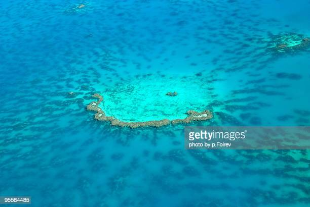 Shallow coral reef seen from above