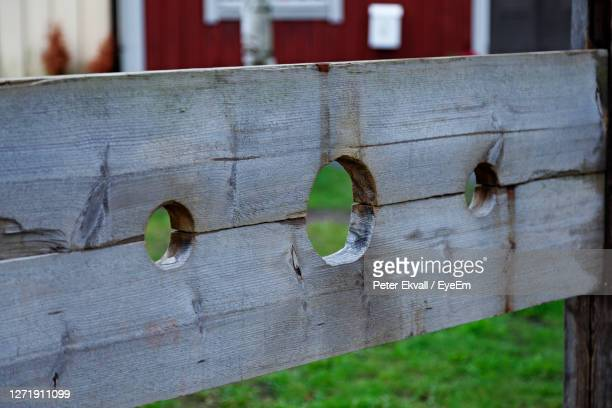 shameful old way of punishing people, the so-called punishment stock - pillory stock pictures, royalty-free photos & images