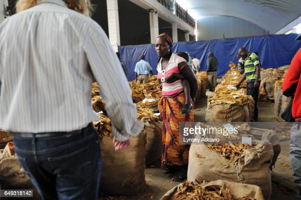Shamiso Gese from Karoi waits for her tobacco to be priced and sold on the auction floor at the Boka Auction Floor Harare Zimbabwe April 17 2012 More...