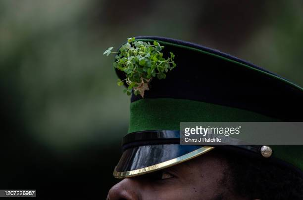 A shamrock on the cap of an Irish Guard as they parade towards the Guards Memorial to mark St Patrick's Day at Wellington Barracks on March 15 2020...