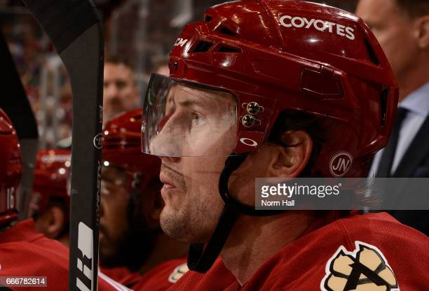 Shane Doan of the Arizona Coyotes looks on from the bench against the Minnesota Wild at Gila River Arena on April 8 2017 in Glendale Arizona