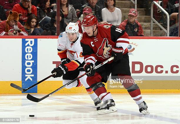 Shane Doan of the Arizona Coyotes skates the puck past Sam Bennett of the Calgary Flames at Gila River Arena on February 12 2016 in Glendale Arizona