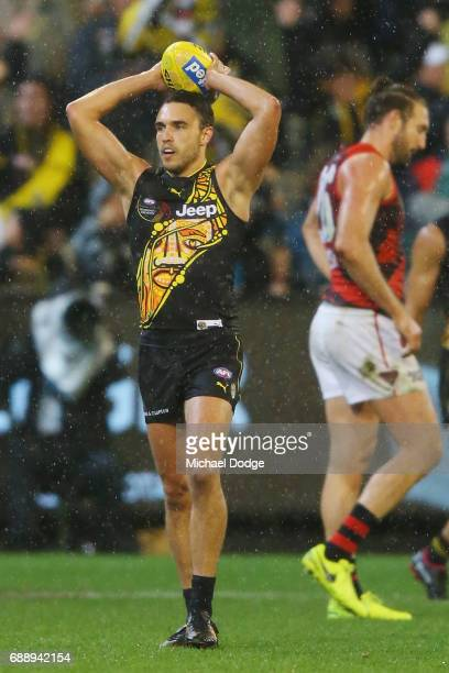 Shane Edwards of the Tigers celebrates the win on the final siren during the round 10 AFL match between the Richmond Tigers and the Essendon Bombers...