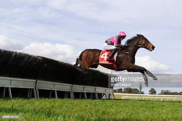 Shane Jackson riding Gold Medals jumps during win in Race 3 The Australian Steeplechase during Melbourne Racing at Sandown Lakeside on May 27 2017 in...