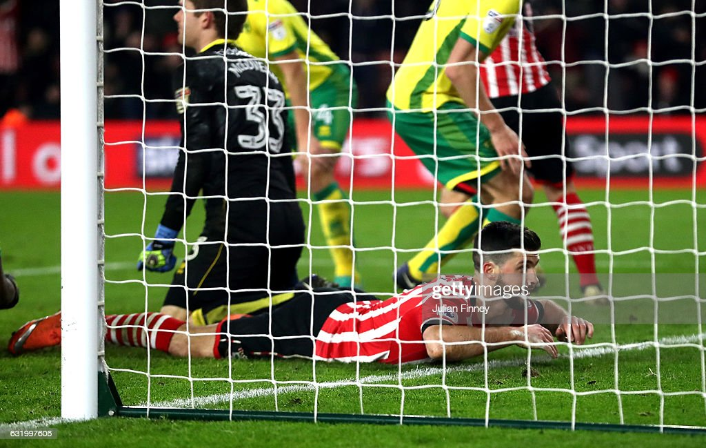 Shane Long of Southampton lies on the ground after scoring the opening goal during The Emirates FA Cup Third Round Replay match between Southampton and Norwich City at St Mary's Stadium on January 18, 2017 in Southampton, England.