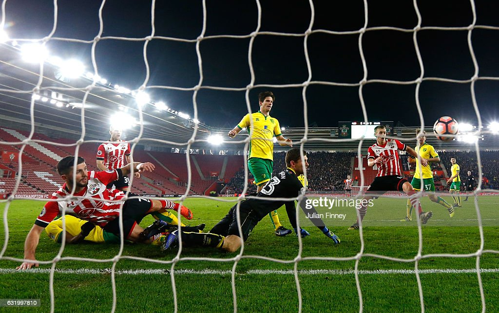 Shane Long of Southampton scores the opening goal during The Emirates FA Cup Third Round Replay match between Southampton and Norwich City at St Mary's Stadium on January 18, 2017 in Southampton, England.