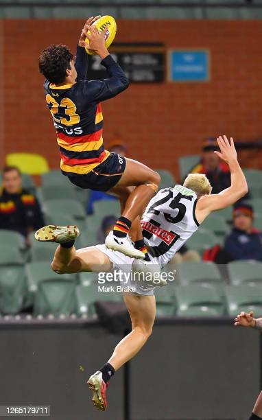 Shane McAdam of the Crows marks over Jack Crisp of the Magpies during the round 11 AFL match between the Adelaide Crows and the Collingwood Magpies...